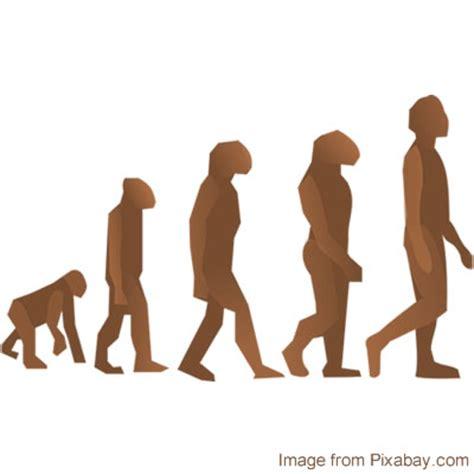 Evolutionary biology literature review 2017